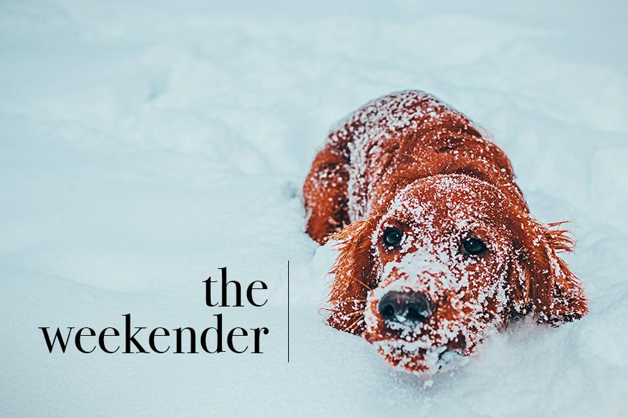 The Weekender - Things to do Around Minneapolis MN