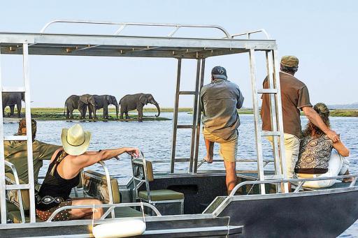 Cruise Travelers in Africa
